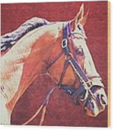 Regal Racehorse Wood Print