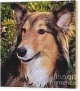 Regal Shelter Dog Wood Print