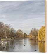 Regents Park London Wood Print