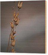 #reggiemiller Wood Print