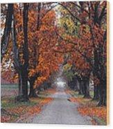 Reid's Orchard Drive Wood Print