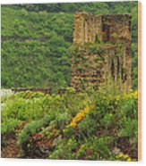 Reinfels Castle Ruins And Wildflowers In The Rhine River Valley 1 Wood Print