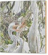 Rejecting Fledglings Wood Print