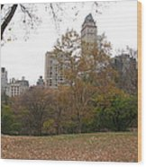 Relax In Central Park Wood Print