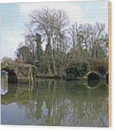 Remains Of Old Bridge Warwick Wood Print