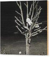 Remembering Joplin Wood Print