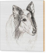 Remembering Maggie - A Tribute To A Collie Wood Print
