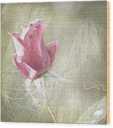 Reminiscing Wood Print