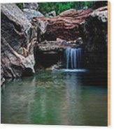 Remote Falls Wood Print by Chad Dutson