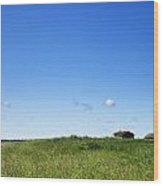 Remote Prairie Landscape With Abandoned Buildings Wood Print