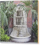 Renaissance Style Water Fountain Wood Print