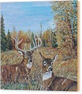 Rendezvous Whitetail Wood Print