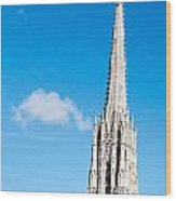 Renovation Of St.stephan Cathedral In Vienna - Austria Wood Print