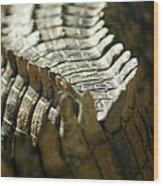 Reptile's Brush Wood Print