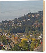 Residential Homes In Suburban North America Wood Print