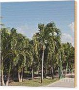 Resort Pathway Wood Print