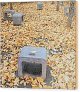 rest in fall IV Wood Print