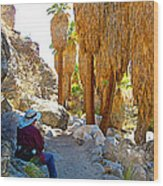 Rest Stop In Andreas Canyon Trail In Indian Canyons-ca Wood Print
