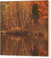 Restes D'automne Wood Print
