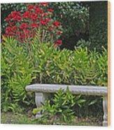 Restful Park Bench Wood Print