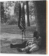 Resting At Gettysburg Wood Print