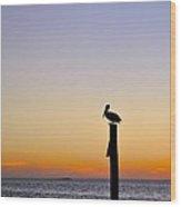 Pelican Fishing At Sunset II Wood Print