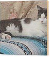 Resting Cat Wood Print