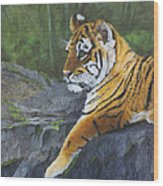 Resting Place - Tiger Cub Wood Print