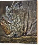 Resting Rhino Wood Print