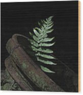 Resurrection Fern Wood Print