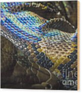 Reticulated Python With Rainbow Scales 2 Wood Print