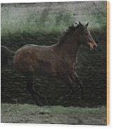 Retro Horse Wood Print