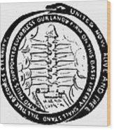 Revolution Masthead, 1775 Wood Print