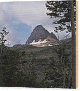 Reynolds Mountain Wood Print
