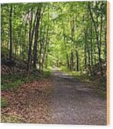 Wooded Path 12 Wood Print