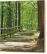 Wooded Path 15 Wood Print