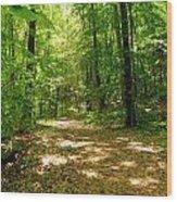 Wooded Path 16 Wood Print