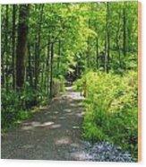 Wooded Path 20 Wood Print