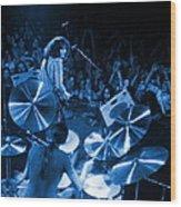 Rg #10 In Blue Wood Print
