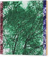 Rgb Trees Wood Print