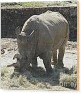 Rhino Eating Wood Print