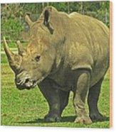 Rhino Look Wood Print