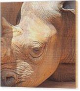 Rhino Naptime Wood Print