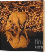 Rhino Reflection Wood Print