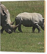 Rhinoceros Wood Print