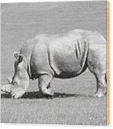 Rhinoceros Charcoal Drawing Wood Print