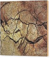 Rhinoceros From Chauve Cave Wood Print