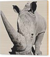 Rhinocerosafrica Wood Print