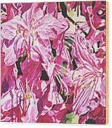 Rhodo Blossoms Wood Print