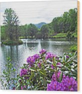 Rhododendron Blossoms And Mountain Pond Wood Print